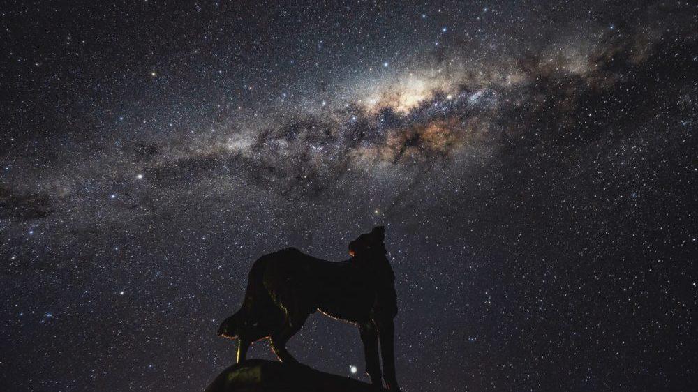 牧羊犬の銅像と天の川